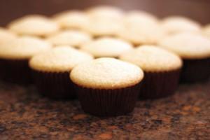 Margarita Cupcakes HCP Easy Roller5