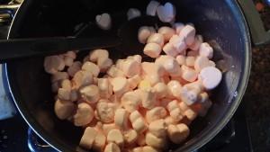 HCP Easy Roller Rice Krispies Treats 2